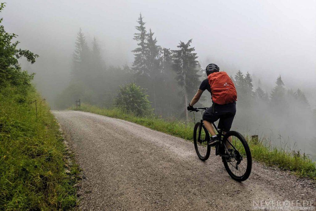 Markus im Nebel